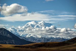Snowy mountains in the distance behind vast forest landscape in Denali National Park, Alaska.
